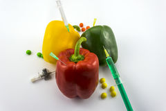 GMO Peppers Royalty Free Stock Image