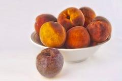 GMO persika Arkivfoton