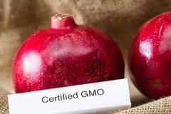 GMO pomegranates Stock Image