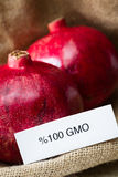 GMO pomegranates Royalty Free Stock Image