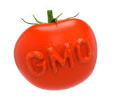 GMO tomato Royalty Free Stock Images