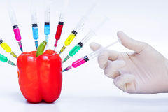 Gmo vegetable. Hand injecting gmo vegetable - sweet pepper surrounded by syringes with colorful chemicals stock photo