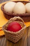 gnäggande för korgeaster ägg Fotografering för Bildbyråer
