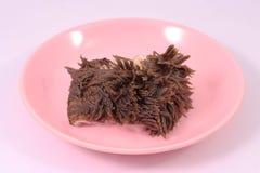 Gnälla våm på rosa maträtt arkivfoto