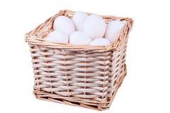 gnäggar fega ägg för korg full Royaltyfri Foto