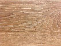 Gnarl den Wood modellen arkivbild