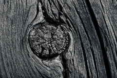 Gnarled old board macro photo Stock Photography