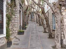 Gnarled trees forming an arch over a walkway. Or narrow lane between stone walled townhouses in a receding view Stock Photography