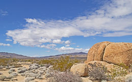 Gneiss Boulders at Joshua Tree Stock Photography