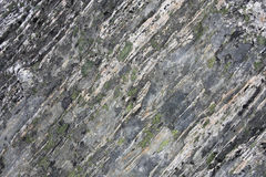 Gneiss rock. With patches of lichen. Remarkables, New Zealand Stock Image