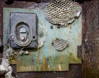 Gniazdeczko osy w starym elektrycznym switchboard Osy polist Obrazy Royalty Free