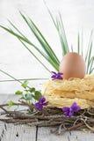 Gniazdeczko Surowy makaron Z jajkiem Obraz Royalty Free