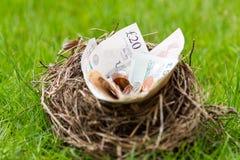Gniazdeczko wypełniający z pieniędzy nie jajkami Fotografia Royalty Free