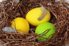 Gniazdeczko z Easter jajkami Obrazy Royalty Free
