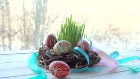Gniazdeczko z grupą Easter jajka zbiory wideo