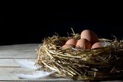 Gniazdeczko z jajkami i Biały piórko na Starym Drewnianym stole Nad Czarnym tłem zdjęcie stock