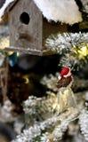 Gniazdować domowego pudełko i ptaka na szklanym dzwonie Zdjęcie Stock