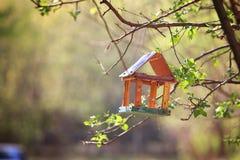 Gniazdować pudełko na drzewie Fotografia Royalty Free