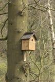 Gniazdować pudełko w lesie Obraz Royalty Free