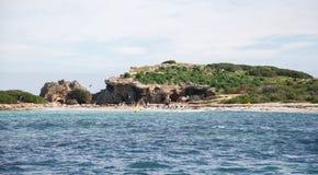 Gniazdować wyspę Obraz Royalty Free