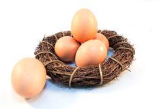 Gniazdowego jajka jedzenia gospodarstwa rolnego śniadanie obrazy royalty free