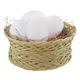 Gniazdowy jajko odizolowywający na bielu fotografia stock