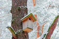 Gniazdowy pudełko w zima lesie Zdjęcia Royalty Free