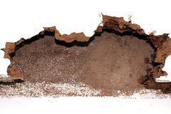 Gniazdowy termit, tło gniazdowy termit, uszkadzał drewnianego jedzącego termitem lub białą mrówką zdjęcie stock