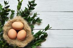 Gniazduje z jajkami na białym drewnianym deski tle Zdjęcie Royalty Free