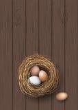 Gniazduje z naturalnymi jajkami kłama na ciemnym drewnianym biurku, ilustracja Obraz Royalty Free