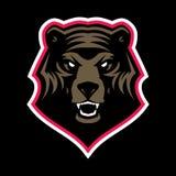 Gniewna grizzly niedźwiedzia głowy maskotka royalty ilustracja