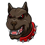 Gniewna psia maskotki kreskówka Obraz Royalty Free