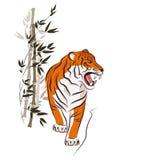 (1) 2 gniewnego czarny koloru halftone tygrysi wersi biel Zdjęcia Stock