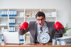 Gniewny biznesmen z bokserskimi rękawiczkami w czasu zarządzania pojęciu Zdjęcie Royalty Free