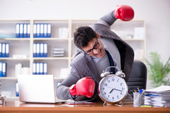 Gniewny biznesmen z bokserskimi rękawiczkami w czasu zarządzania pojęciu Obraz Stock