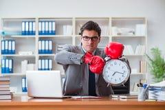 Gniewny biznesmen z bokserskimi rękawiczkami w czasu zarządzania pojęciu Obrazy Royalty Free