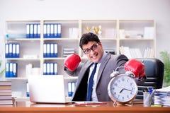 Gniewny biznesmen z bokserskimi rękawiczkami w czasu zarządzania pojęciu Obrazy Stock