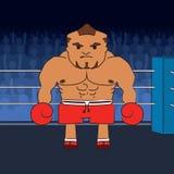 Gniewny bokser Zdjęcie Royalty Free