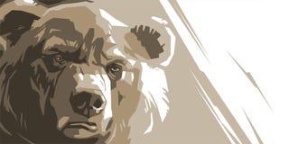Gniewny brown niedźwiedź royalty ilustracja