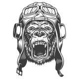 Gniewny goryl w monochromu stylu ilustracja wektor