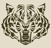 gniewny kompleksu głowy sylwetki tygrys Obrazy Stock