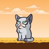Gniewny projektujący wektorowy kot, ilustracja Fotografia Royalty Free