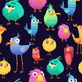 Gniewny ptaka wzór Gemowe papugi i egzotycznego dziecka barwioni ptaki śliczni i śmieszni Wektorowej kreskówki bezszwowe ilustrac ilustracja wektor