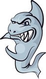 gniewny rekin Fotografia Royalty Free
