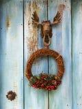 Gniewu obwieszenie przed błękitnym drewnianym drzwi Fotografia Royalty Free