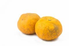 Gnilna pomarańcze Fotografia Royalty Free