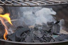 Gnist av grillfest Royaltyfri Bild