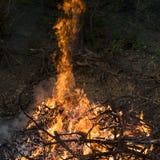 Gnistor av brand på en svart bakgrund arkivbild