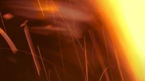 Gnistor och flammor stock video