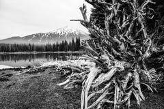 Gnistor sjö, Oregon Arkivfoto